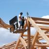 Frame Raising Pine Bough 01