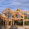 Frame Raising Pine Bough 08