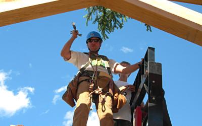 Frame Raising Pine Bough 10
